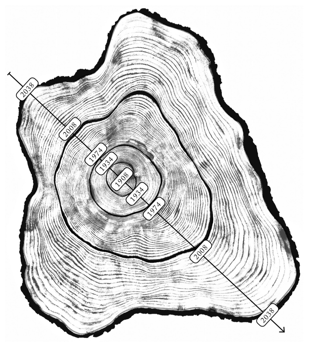 Greenwood Ring Structure